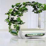 Cama verde: boa para o planeta e também para dormir!