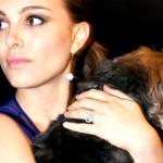 Natalie Portman utiliza sua fama em prol dos animais