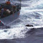 Tripulante da Sea Shepherd é derrubado em águas geladas da Antártida por japoneses