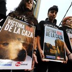 Animalistas querem rei da Espanha fora da WWF após caçada de elefantes