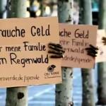 Sem voluntários, ONG recruta árvores para ajudarem a salvar a própria pele