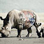 10 Anúncios Interessantes da WWF