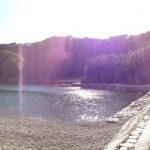 Relato de Daniela Yjichi sobre o 1º dia em Taiji (AZUL)