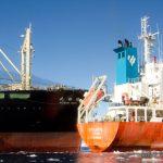 Caça as baleias – Japoneses param operações, mas continuam no mar