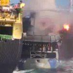 Baleeiros lançam granada em navio ambientalista