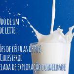 Será que preciso de leite para obter cálcio?
