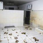 Instituto Royal fecha suas portas em São Roque