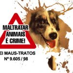 Animais estão sendo envenenados em São José dos Campos (SP)