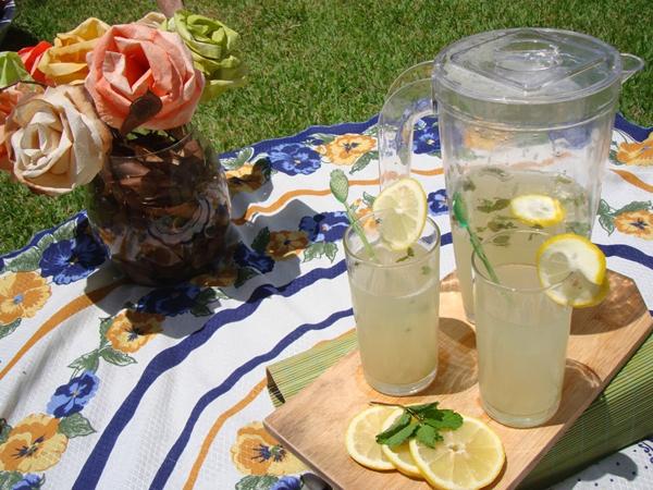 limonada-refrescante-limão-vegetarianismo-veganismo-veganique-camaleão