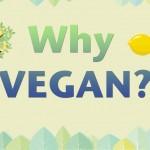 Por que veganismo?