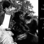 Direitos Animais: a abordagem abolicionista de Gary Francione