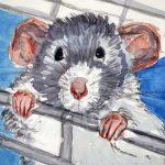 Artista seleciona escritores para criação de e-book sobre animais