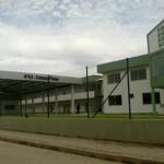 Especismo e Somatofobia: Professora acusada de estrangular gatos em Piúma