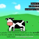 Vegano cria desenhos criativos sobre direitos animais