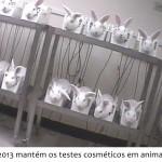 PL 6602 mantém os testes cosméticos em animais no Brasil