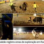 Camaleão flagra maus-tratos em rodeio no interior de São Paulo