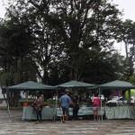 Saiba onde encontrar produtos sem agrotóxicos em Ubatuba