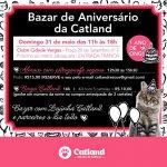 ONG de gatinhos comemora aniversário com estrogonofe vegetariano