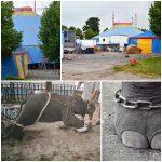 Elefanta escapa de confinamento de circo na Alemanha