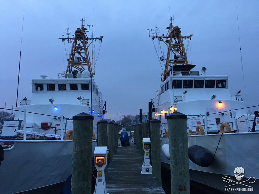 Farley-Mowat-and-the-Jules-Verne-in-Annapolis-Maryland-sea-shepherd-global