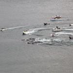Brasileiro está indo ajudar baleias nas Ilhas Faroe pela Sea Shepherd