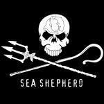 Qual o significado do logotipo da Sea Shepherd?
