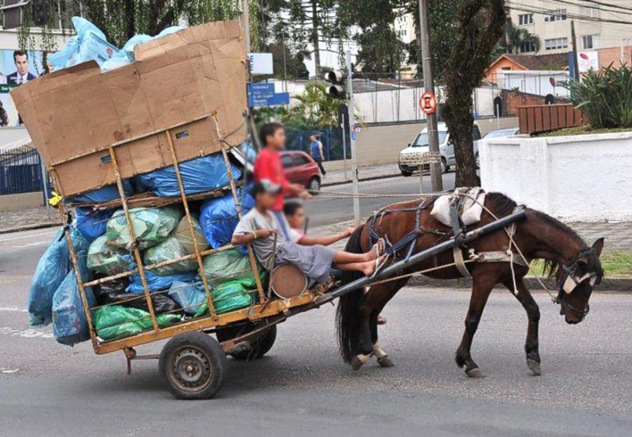 Curitiba (PR) está oficialmente com as carroças proibidas 07bb851a0b3