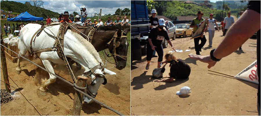 puxada-de-cavalos-foi-proibida-pela-alesc-governador- db8f7ae4760