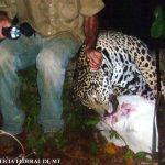 Pecuarista mata onças e aluga fazenda para caça no Mato Grosso