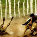 STF derruba lei cearense e torna Vaquejada ilegal