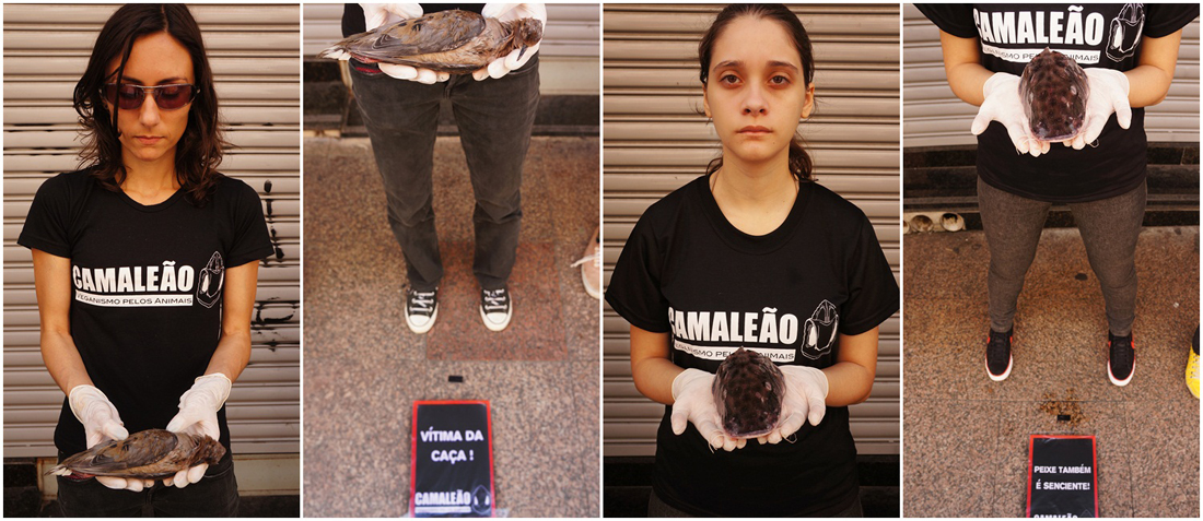 ong-camaleao-ativismo-anti-especista-veganismo-dia-internacional-direitos-animais-abolicionismo-abordagem-abolicionista