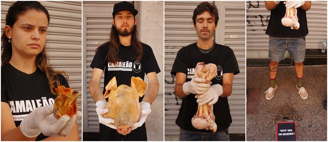 ong-camaleao-ativismo-anti-especista-veganismo-dia-internacional-direitos-animais-abolicionismo-vegetarianismo-laticinios-leite-queijo-ovos