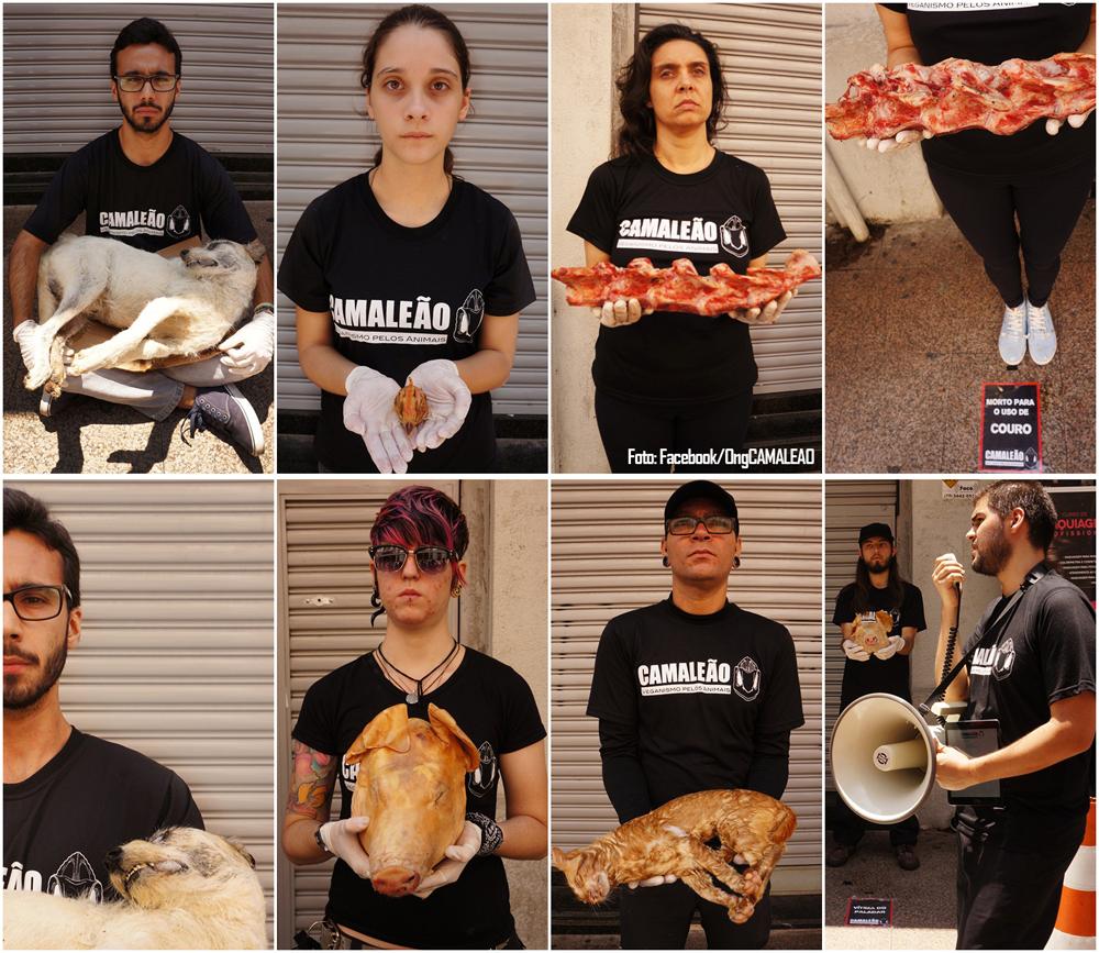ong-camaleao-faz-ato-impactante-repara-promover-dia-internacional-direitos-animais-vale-paraiba-interior-sao-paulo-ativismo-anti-especista-dida-2016